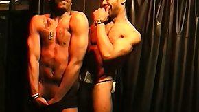 Nightclub, Gay