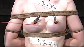 Hogtied, BDSM, Bitch, Blonde, Bondage, Bound