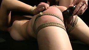 Bondage, Amateur, Babe, BDSM, Bitch, Blowjob